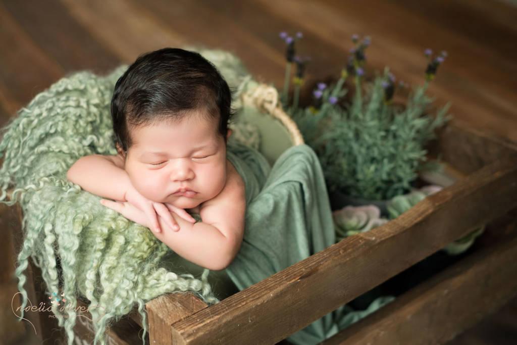 Trabajos de Noelia Oliver en New Born - Recién nacidos